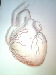 32a02-inima