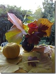 Aranjament vegetal de toamna - Autumn still life