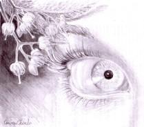 Ochiul iubitei lui Eminescu si cateva flori de tei desenate in creion