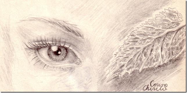 Un ochi strain si o frunza de pelin desen in creion