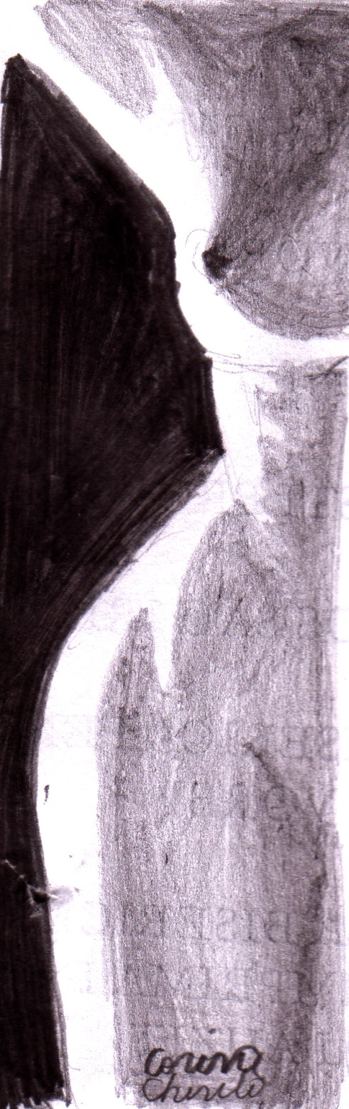 Nud feminin pe jumatate desen in creion