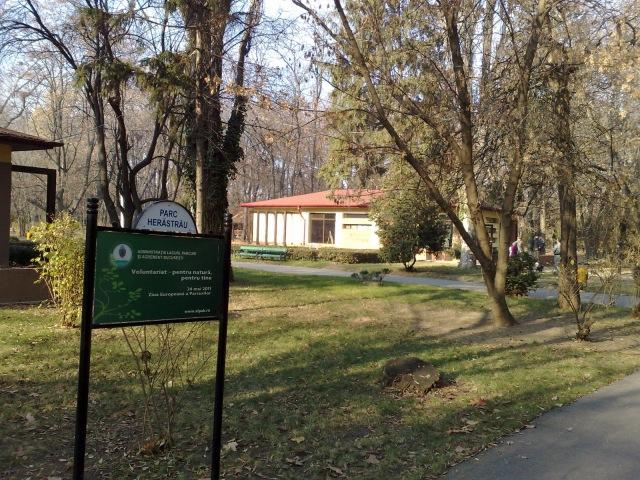 Asociatia Artistilor Plastici din Bucuresti risca sa piarda si galeria din Herastrau