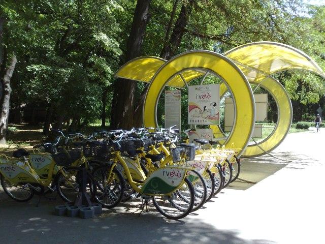 Biciclete lasate de izbeliste in Herastrau