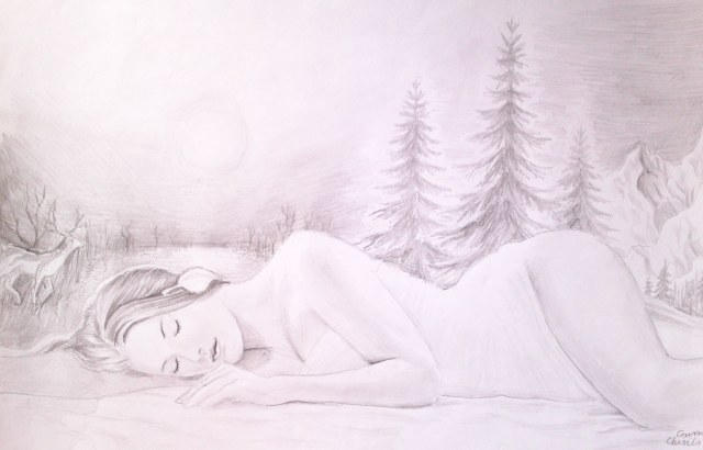 Vara de noiembrie desen in creion inspirat din poezia lui Lucian Blaga