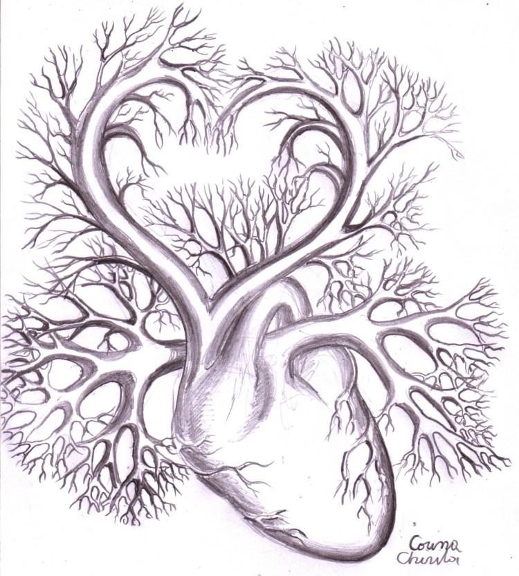 Inima, desen in creion