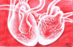 Doua inimi, desen facut cu pixul