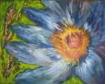 Floare de cicoare, pictura de Suzana Gheorghe
