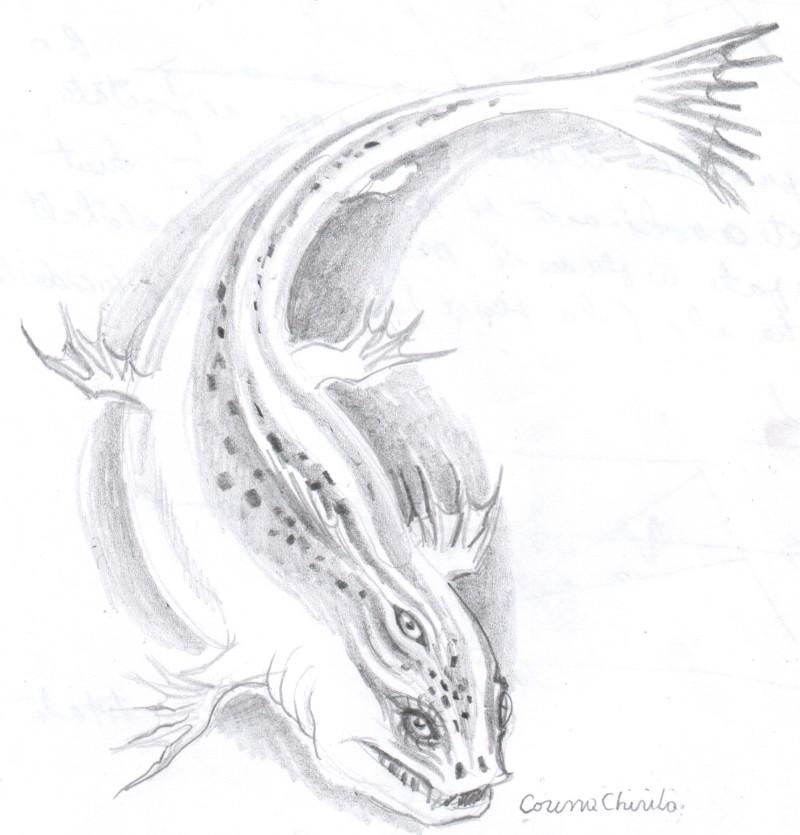 amfibian-primitiv