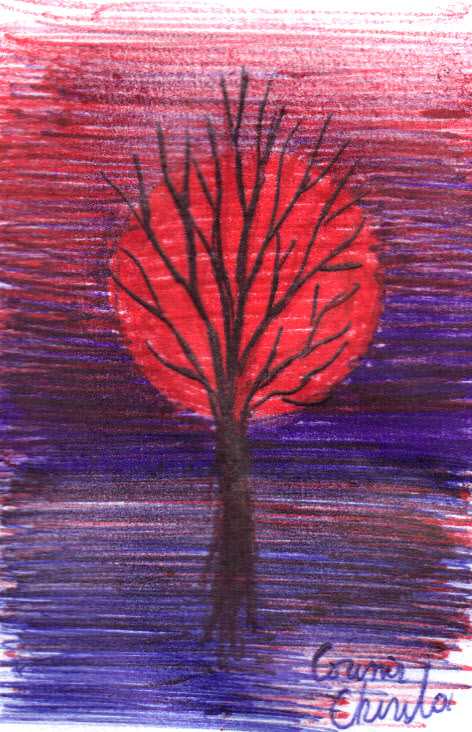 a-tree-in-the-sunset-ball-point-pen-drawing