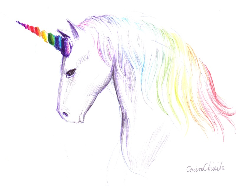 Cap de unicorn desenat cu pixul - Unicorn head ball point pen drawing