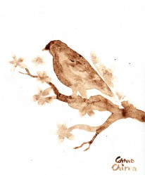 Bird coffee painting - pasarica pictata cu cafea