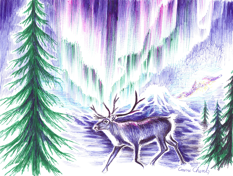 Un ren in noaptea polara, desen de iarna facut cu pixul